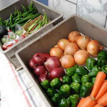 お野菜がもらえる賃貸物件が溝の口に!?入居者サービスも時代とともに変わってきています。
